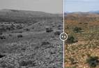 Before–and–after photos show how climate change is affecting South Africa.